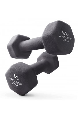 Dumbbell - 20 LBS