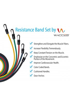 Resistance Bands: 11 Piece Set